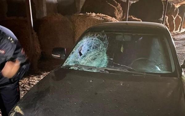 На Ставрополье нашли скрывшегося с места аварии водителя